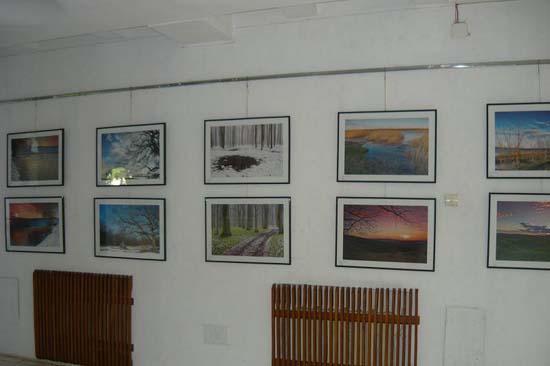 Expozitia ''Orizonturi iesene''-2011