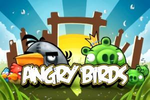 y_Birds