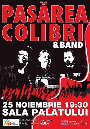 Concert Pasarea Colibri - 19