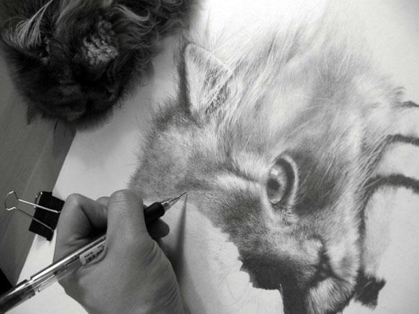 Paul Lung- desene pisici