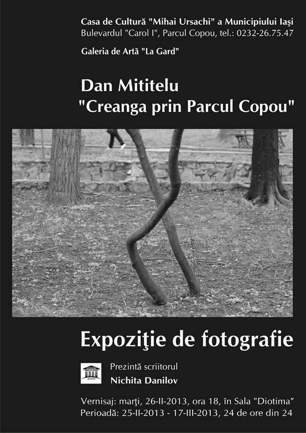 Dan_Mititelu_Afis_Expo_Copou_2013_m