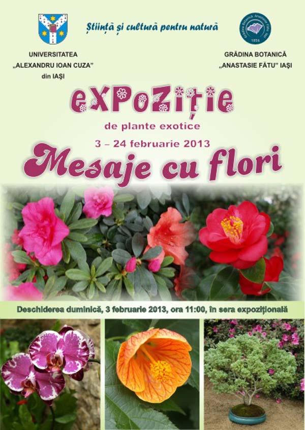expozitie plante exotice - Gradina Botanica