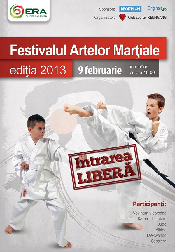 Festivalul artelor martiale - editia 2013 afis iasi era www.iasifun.ro