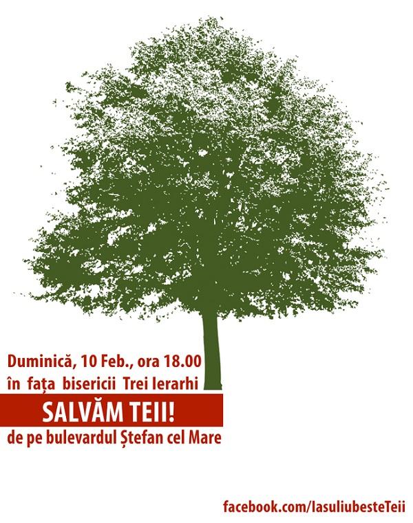 Salvați Teii de pe bulevardul Ștefan cel Mare/ 10 februarie 2013 afis iasi www.iasifun.ro