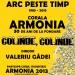 Concert de colinde al Coralei Armonia 1990