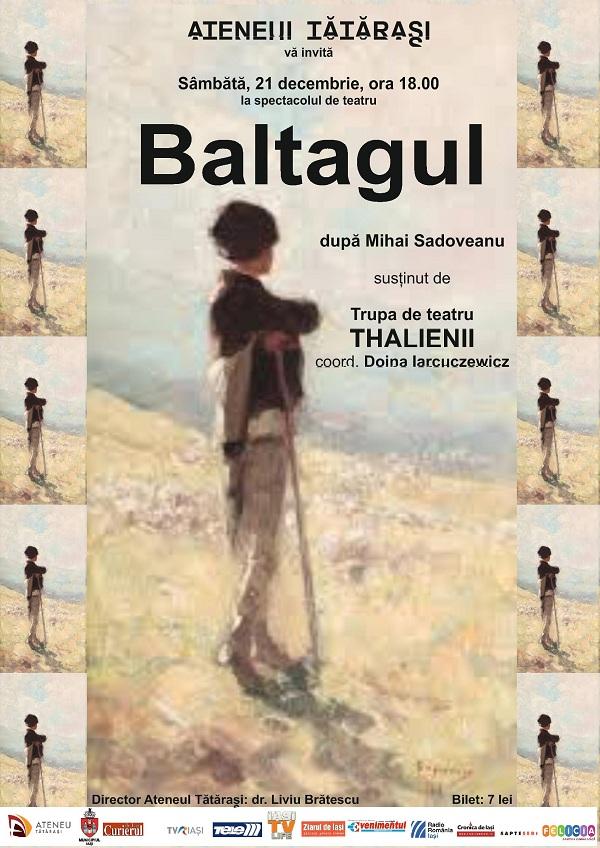 baltagul-piesa-de-teatru-ateneul-tatarasi-iasi-afis