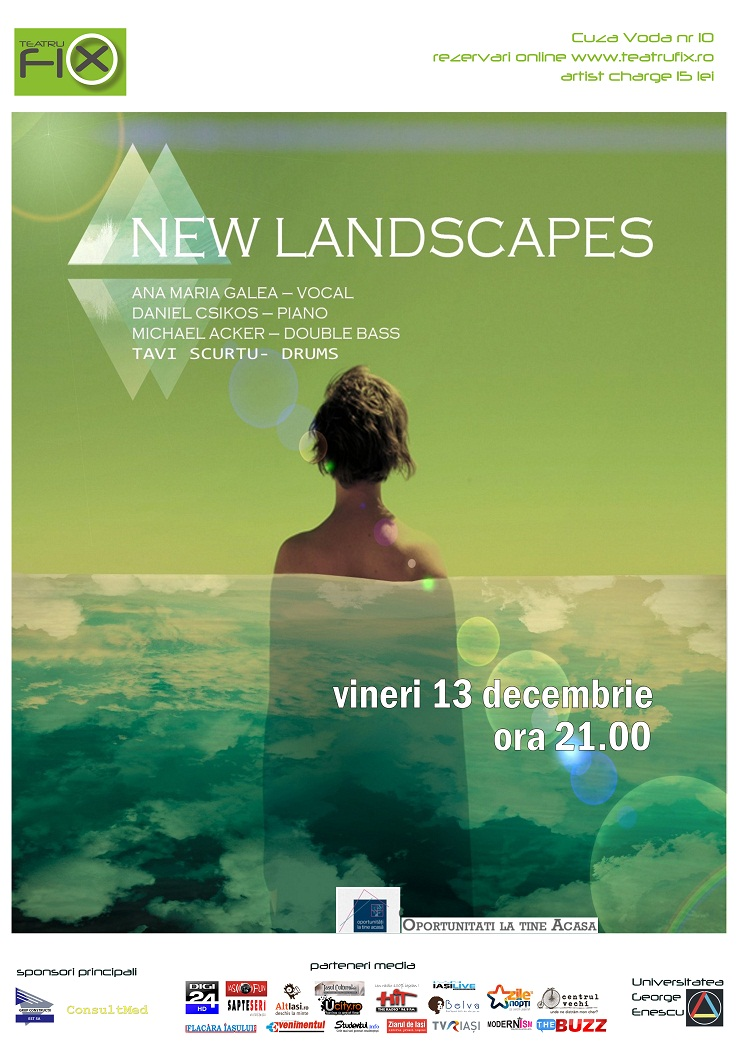 new-landscapes-teatru-fix-iasi-afis-ana-galea-2013