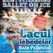 """""""Lacul lebedelor"""" cu Ballet on Ice din Sankt Petersburg"""