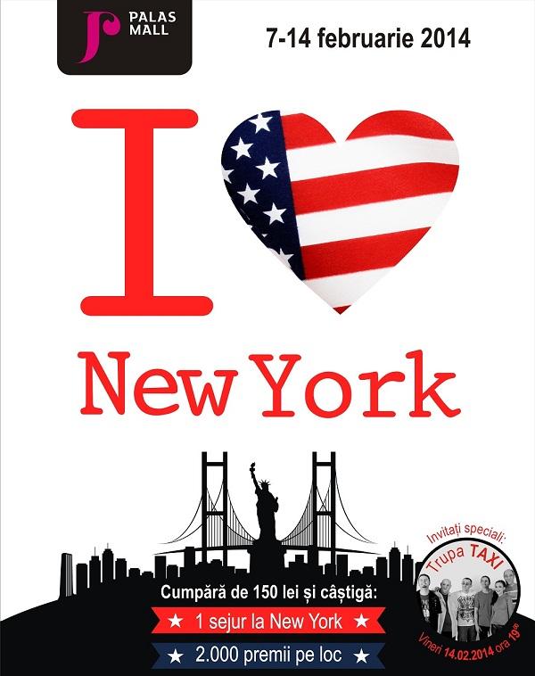 palas-mall-campanie-pentru-tineri-excursie-la-new-york-7-14-februarie-2014-afis