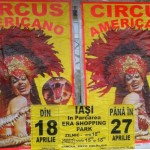 circus-americano-iasi-era-shopping-park-afis-2014