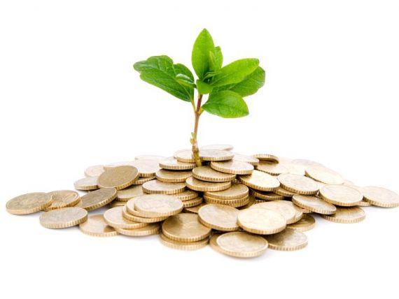 afaceri-de-la-a-la-finantare-iasi-foto