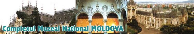 complexul-muzeal-national-moldova-iasi-foto