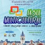 iasul-multicolor-fis-2014