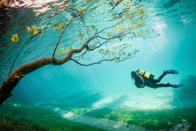 national-geographic-locul-3