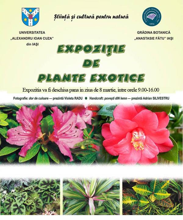 plante-exotice