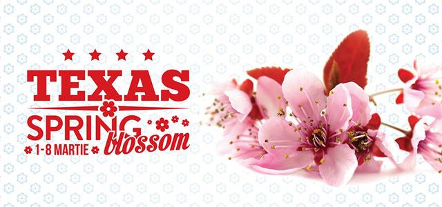 Texas-Spring-Blossom_galeri