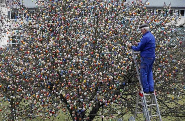 copac-decorat-paste-9