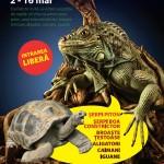 reptile-vii-era