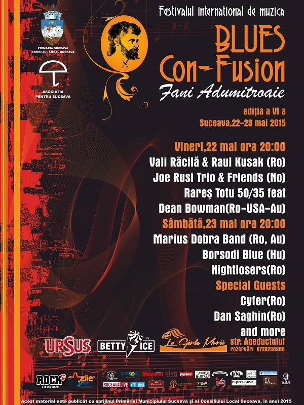 Afis festival - web