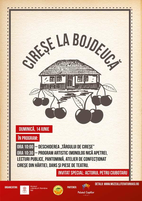 Targ-de-cirese-la-Bojdeuca