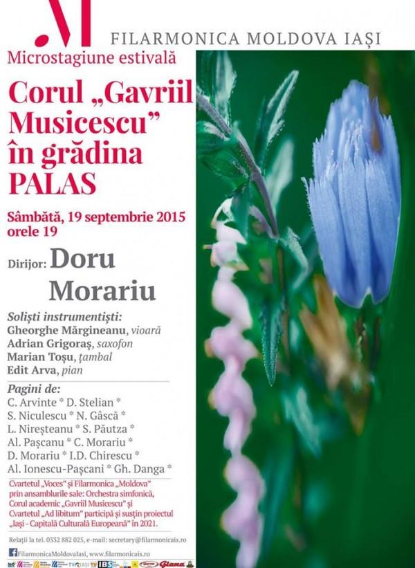 gavriil musicescu-palas