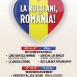 Ziua Romaniei-palas
