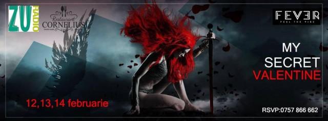 my secret valentine-fever
