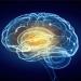 Electroencefalografia, o investigație neurologică avansată