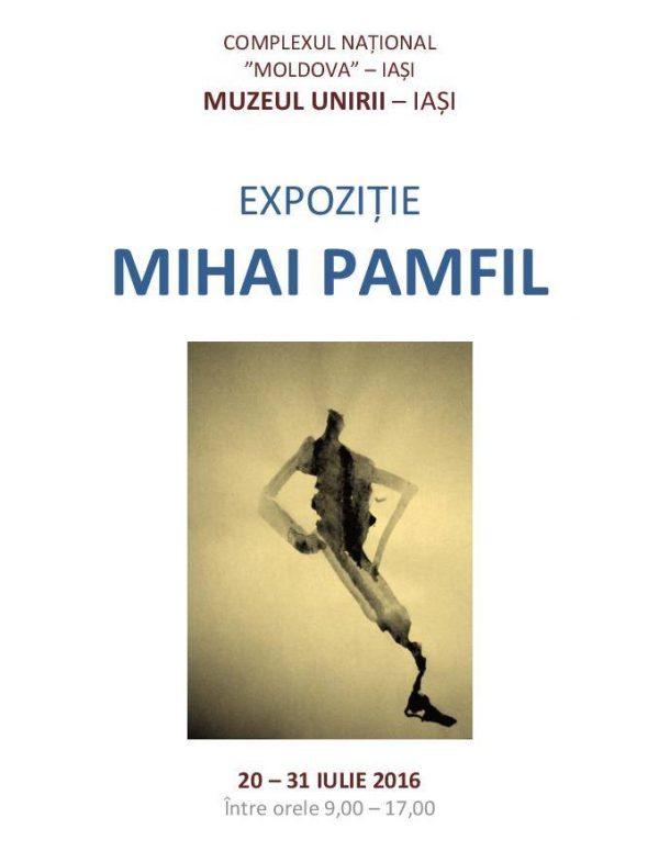 mihai pamfil