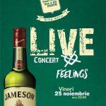 live-feelings