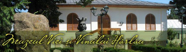 muzeul-viei-si-vinului