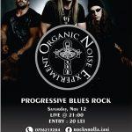 organic-noise