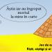 """""""Piramida"""", un joc de cultura generala si logica @Arte Bar"""