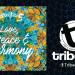 Directia 5 LIVE @Tribeca Pub & Charcoal Grill