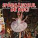 "Saint Petersburg Classical Ballet prezinta ""Spargatorul de nuci"" la Iasi"