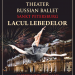 Lacul Lebedelor | Theater Russian Ballet Sankt Petersburg