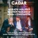 TACHE, IANKE ȘI CADÂR | Teatrul National Iasi
